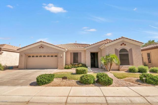 4206 E Carob Drive, Gilbert, AZ 85298 (MLS #5770432) :: Kepple Real Estate Group