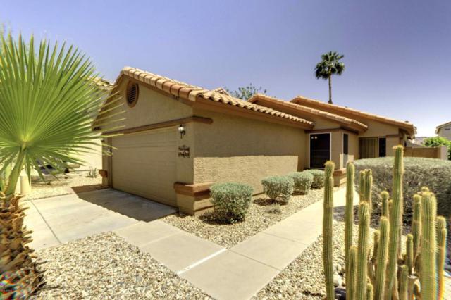 1347 E Muriel Drive, Phoenix, AZ 85022 (MLS #5770441) :: Phoenix Property Group