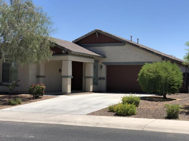 12739 W Chucks Avenue, Peoria, AZ 85383 (MLS #5770442) :: Phoenix Property Group