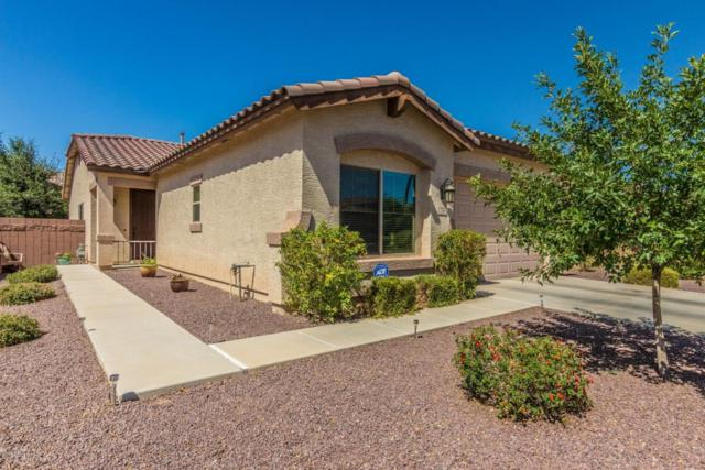 758 W Trellis Road, Queen Creek, AZ 85140 (MLS #5770446) :: Yost Realty Group at RE/MAX Casa Grande
