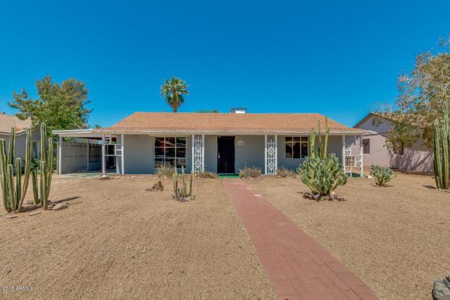 9040 N 3RD Avenue, Phoenix, AZ 85021 (MLS #5770455) :: Phoenix Property Group
