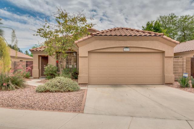 2039 W Tracy Lane, Phoenix, AZ 85023 (MLS #5770467) :: Phoenix Property Group