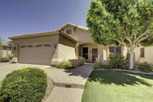 6668 W Aurora Drive, Glendale, AZ 85308 (MLS #5770468) :: Phoenix Property Group