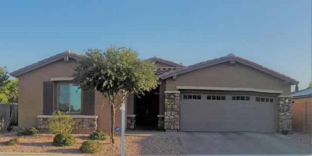 14309 W Desert Flower Drive, Goodyear, AZ 85395 (MLS #5770472) :: Phoenix Property Group