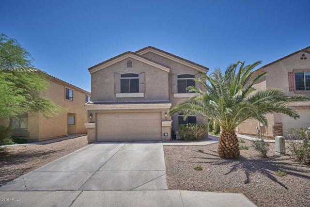 18930 N Ibis Way, Maricopa, AZ 85138 (MLS #5770528) :: Power Realty Group Model Home Center