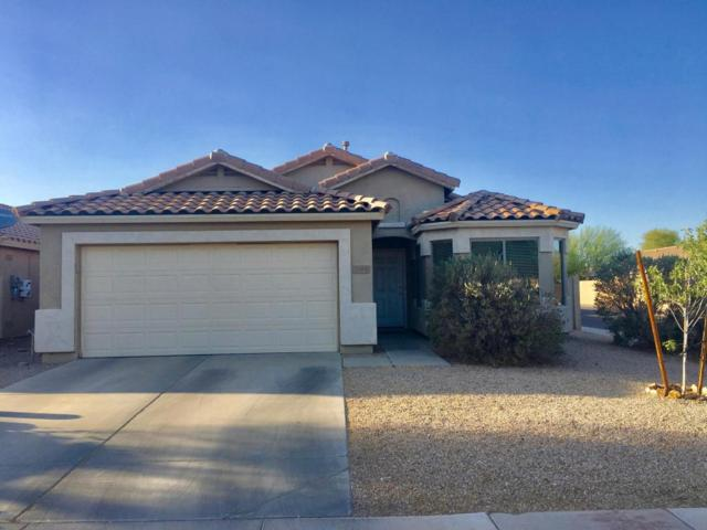 3148 W Allens Peak Drive, Queen Creek, AZ 85142 (MLS #5770534) :: Yost Realty Group at RE/MAX Casa Grande