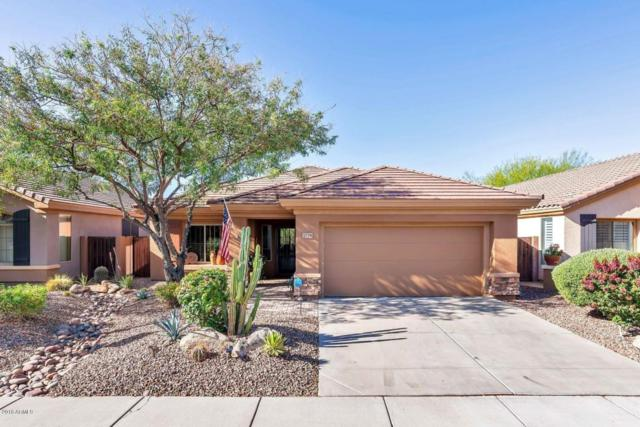 1729 W Dion Drive, Anthem, AZ 85086 (MLS #5770541) :: Kortright Group - West USA Realty