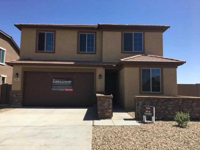 905 E Locust Lane, Avondale, AZ 85323 (MLS #5770574) :: Five Doors Network