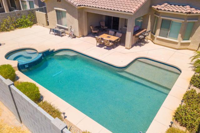 16775 W Hammond Street, Goodyear, AZ 85338 (MLS #5770600) :: Five Doors Network