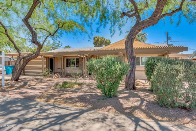2433 W Freeway Lane, Phoenix, AZ 85021 (MLS #5770605) :: Yost Realty Group at RE/MAX Casa Grande