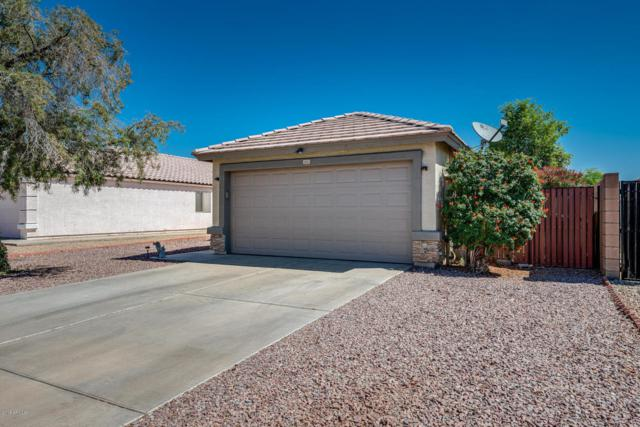 16515 N 158TH Avenue, Surprise, AZ 85374 (MLS #5770617) :: Kortright Group - West USA Realty