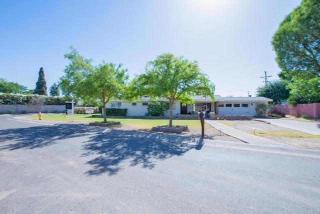 4820 N 35TH Street, Phoenix, AZ 85018 (MLS #5770645) :: Yost Realty Group at RE/MAX Casa Grande