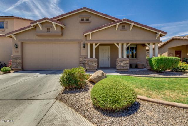 215 E Gold Dust Way, San Tan Valley, AZ 85143 (MLS #5770656) :: Power Realty Group Model Home Center
