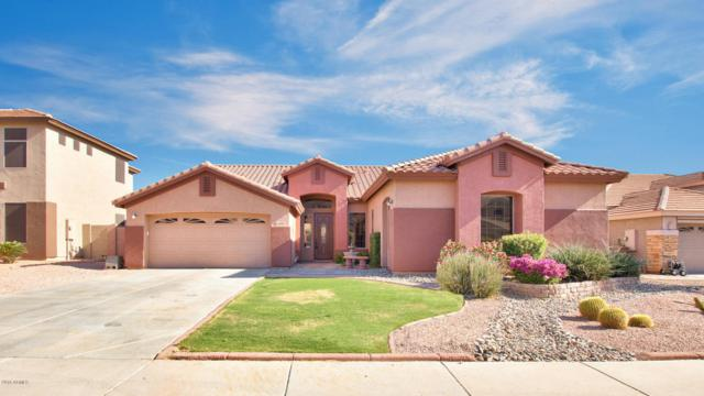 6889 W Lariat Lane, Peoria, AZ 85383 (MLS #5770657) :: Power Realty Group Model Home Center