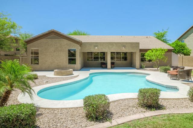 4040 E Adobe Drive, Phoenix, AZ 85050 (MLS #5770658) :: My Home Group