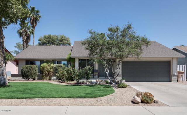 10512 W Seldon Lane, Peoria, AZ 85345 (MLS #5770666) :: Power Realty Group Model Home Center