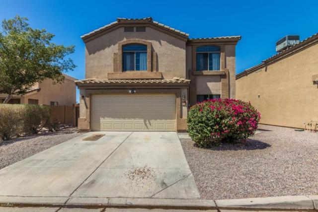 6824 E Lush Vista View, Florence, AZ 85132 (MLS #5770669) :: My Home Group