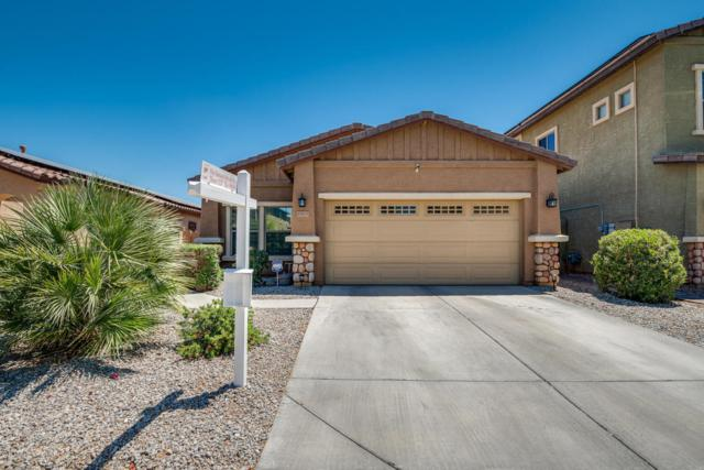 17575 W Bridger Street, Surprise, AZ 85388 (MLS #5770673) :: Essential Properties, Inc.