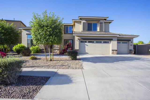 7849 W Rovey Avenue, Glendale, AZ 85303 (MLS #5770753) :: Essential Properties, Inc.