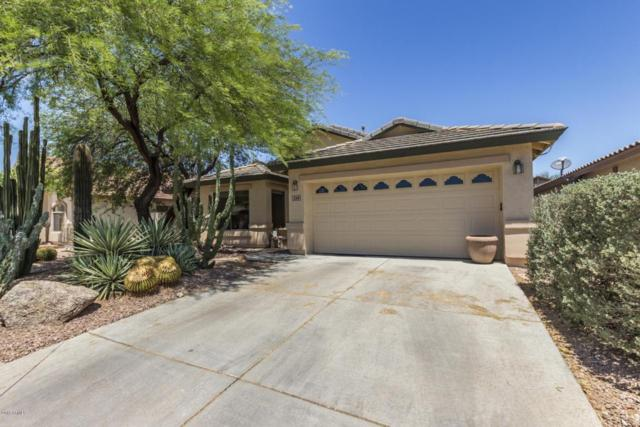 2318 W Bent Tree Drive, Phoenix, AZ 85085 (MLS #5770764) :: Devor Real Estate Associates