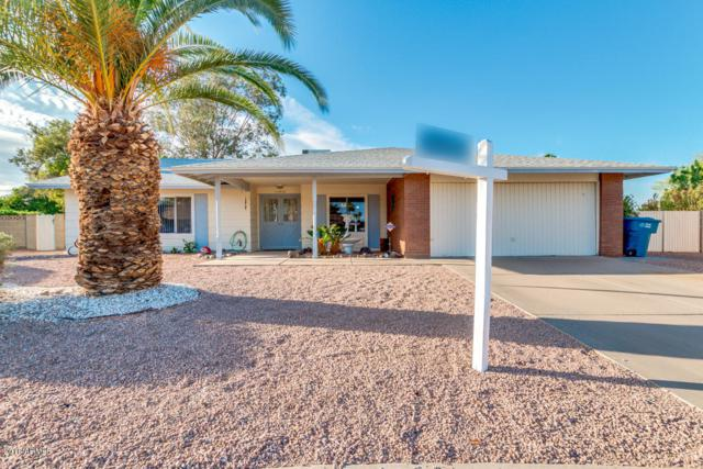 11414 S Iroquois Drive, Phoenix, AZ 85044 (MLS #5770769) :: Power Realty Group Model Home Center