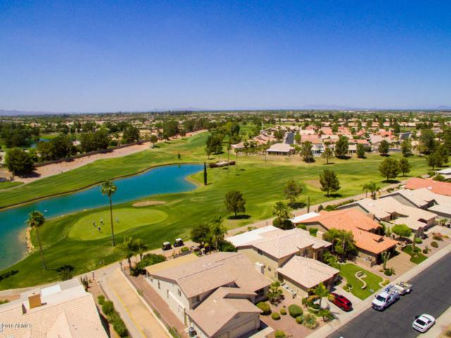 512 W Champagne Drive, Chandler, AZ 85248 (MLS #5770774) :: Yost Realty Group at RE/MAX Casa Grande