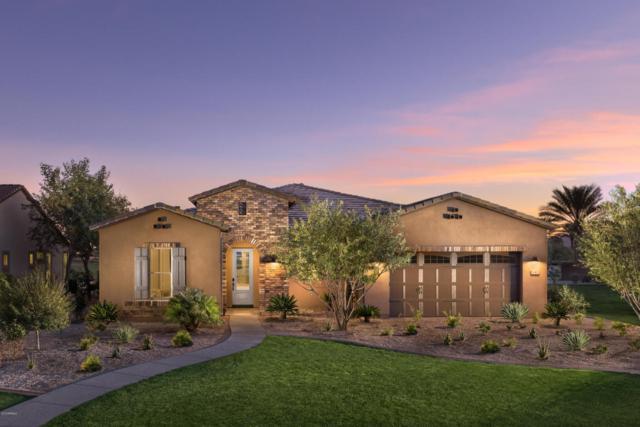 1793 E Rustic Court, San Tan Valley, AZ 85140 (MLS #5770777) :: Power Realty Group Model Home Center