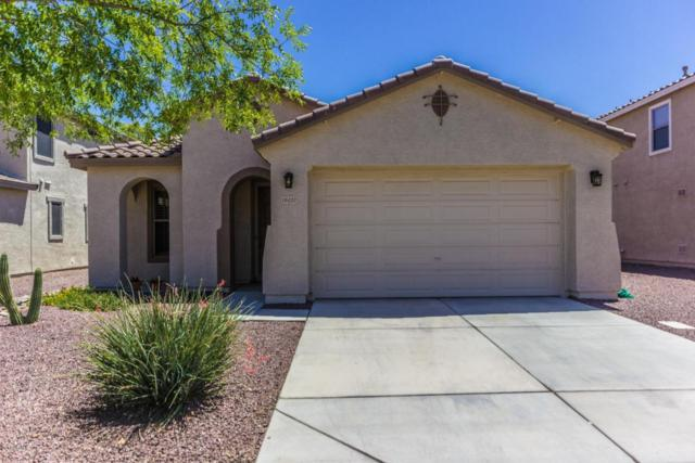 16423 W Prickly Pear Trail, Surprise, AZ 85387 (MLS #5770782) :: Five Doors Network