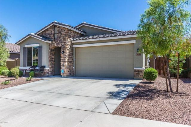 21263 W Berkeley Road, Buckeye, AZ 85396 (MLS #5770787) :: Five Doors Network
