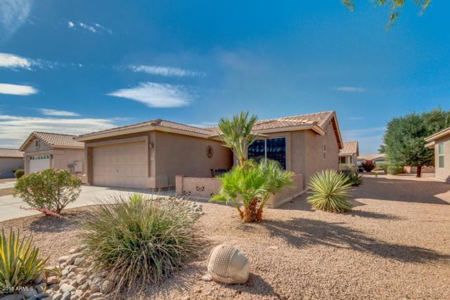 1440 E La Costa Drive, Chandler, AZ 85249 (MLS #5770795) :: Yost Realty Group at RE/MAX Casa Grande
