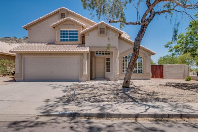 15033 S 9TH Place, Phoenix, AZ 85048 (MLS #5770826) :: Power Realty Group Model Home Center