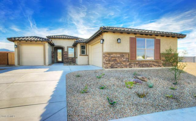 18264 W Thunderhill Place, Goodyear, AZ 85338 (MLS #5770836) :: The Garcia Group