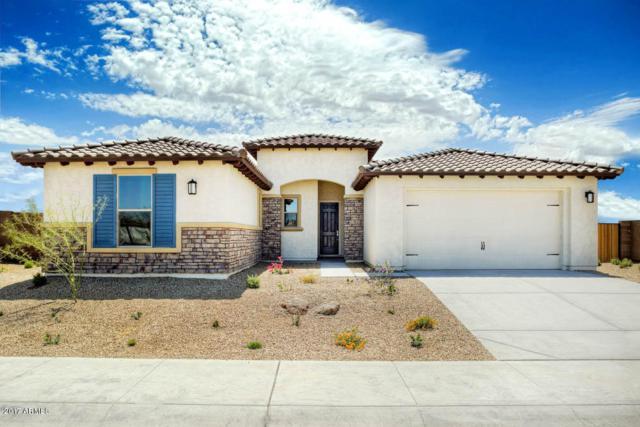 15207 S 183RD Avenue, Goodyear, AZ 85338 (MLS #5770850) :: Five Doors Network