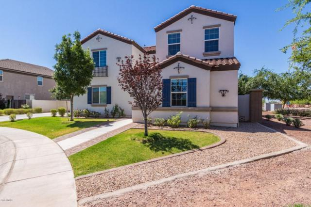 4005 E Blue Ridge Place, Chandler, AZ 85249 (MLS #5770862) :: Power Realty Group Model Home Center