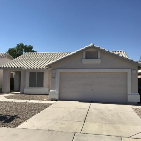 729 E Megan Street, Chandler, AZ 85225 (MLS #5770885) :: Power Realty Group Model Home Center