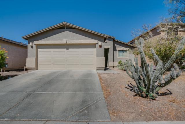 30662 N Honeysuckle Drive, San Tan Valley, AZ 85143 (MLS #5770906) :: Yost Realty Group at RE/MAX Casa Grande