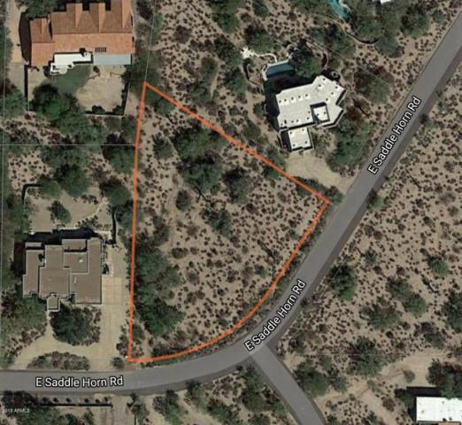 8110 E Saddle Horn Road, Scottsdale, AZ 85255 (MLS #5770916) :: Power Realty Group Model Home Center
