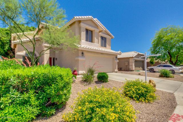 8820 W Adam Avenue, Peoria, AZ 85382 (MLS #5770950) :: Power Realty Group Model Home Center