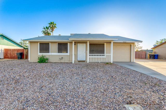 3012 N El Dorado Drive, Chandler, AZ 85224 (MLS #5770951) :: Power Realty Group Model Home Center