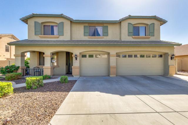4641 E Karsten Drive, Chandler, AZ 85249 (MLS #5770965) :: Power Realty Group Model Home Center