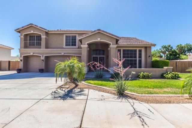 5520 N 131ST Drive, Litchfield Park, AZ 85340 (MLS #5770982) :: Five Doors Network