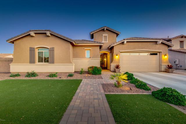 2487 E Orleans Drive, Gilbert, AZ 85298 (MLS #5770984) :: Power Realty Group Model Home Center