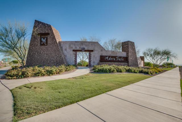 2414 E Hazeltine Way S, Gilbert, AZ 85298 (MLS #5770992) :: Power Realty Group Model Home Center