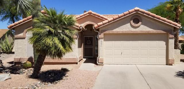 6893 S Lake Forest Court, Chandler, AZ 85249 (MLS #5771009) :: Yost Realty Group at RE/MAX Casa Grande