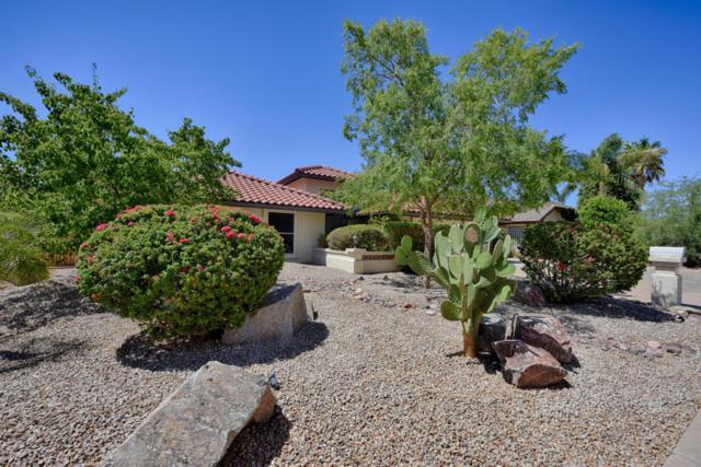 13014 N 13TH Lane, Phoenix, AZ 85029 (MLS #5771016) :: Lifestyle Partners Team