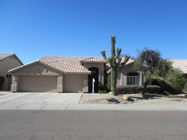 13364 W Alvarado Drive, Goodyear, AZ 85395 (MLS #5771017) :: Five Doors Network
