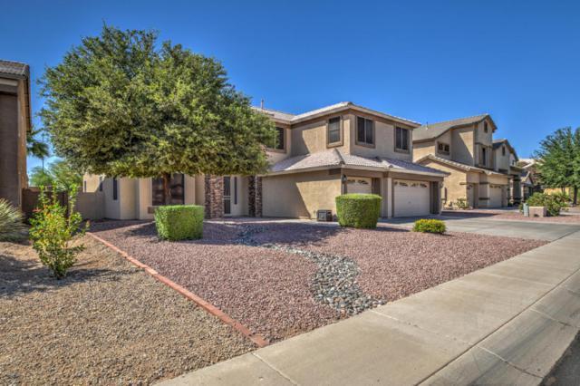 7056 W Honeysuckle Drive, Peoria, AZ 85383 (MLS #5771033) :: Five Doors Network