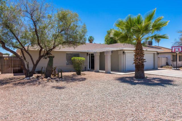 1521 E Emerald Avenue, Mesa, AZ 85204 (MLS #5771038) :: Yost Realty Group at RE/MAX Casa Grande