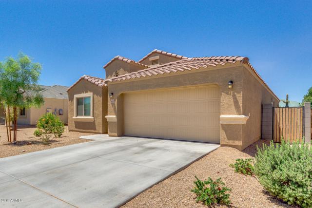 1853 N Lewis Place, Casa Grande, AZ 85122 (MLS #5771039) :: Arizona 1 Real Estate Team