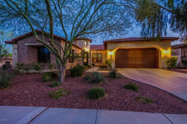 21345 W Cholla Trail, Buckeye, AZ 85396 (MLS #5771045) :: Five Doors Network
